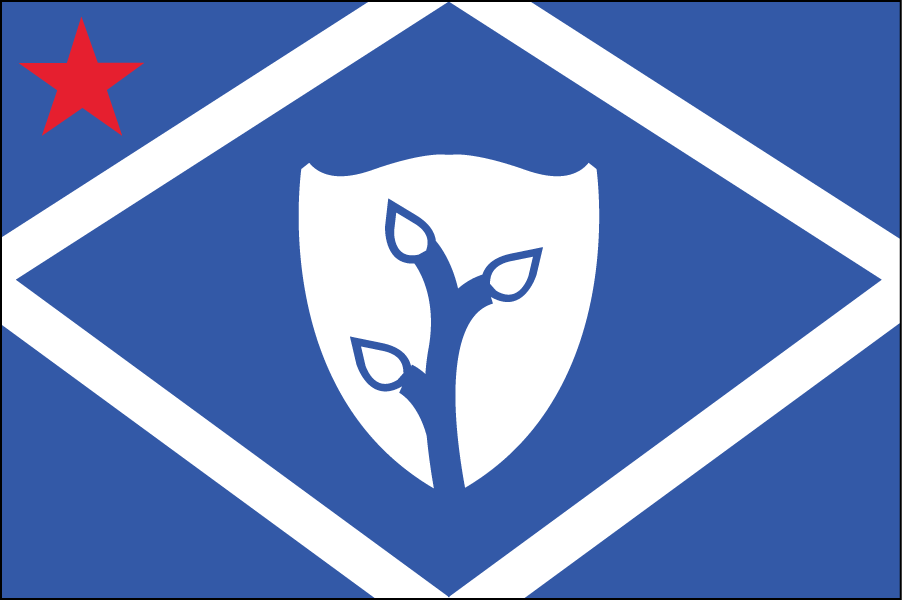 DELAWARE: The shield in the middle is the shield of liberty, and the plant symbolizes agriculture. The parallelogram is a crop plot.