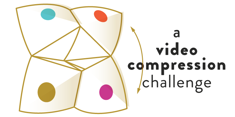 the best embedded solution to a video compression challenge