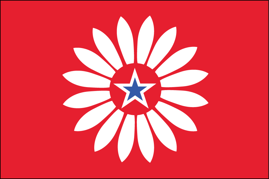 KANSAS: I kept Kansas simple and used the state flower, the wild sunflower, as the main element. The star in the middle represents the state itself.