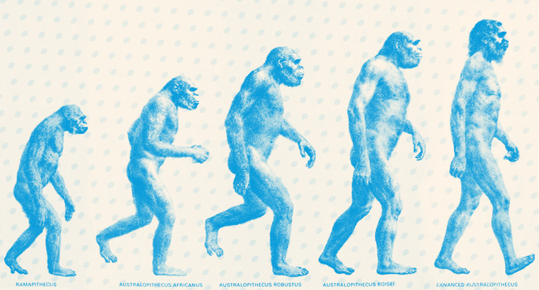 Evolution of the Designer Psyche